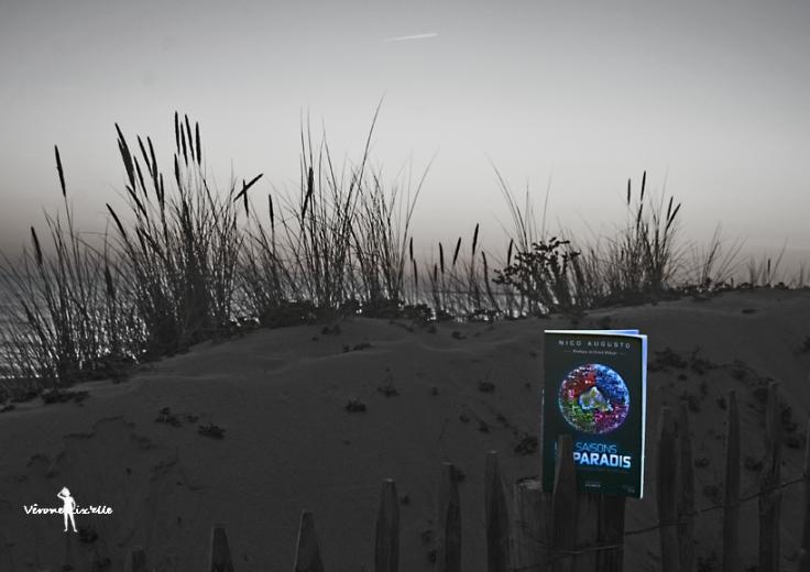 DSC_0802 final mini