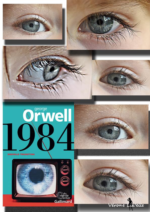 1984 fin
